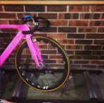 lizanne-wilmot-curve-g4-wheels-tempe-velodrome-rollerzzz